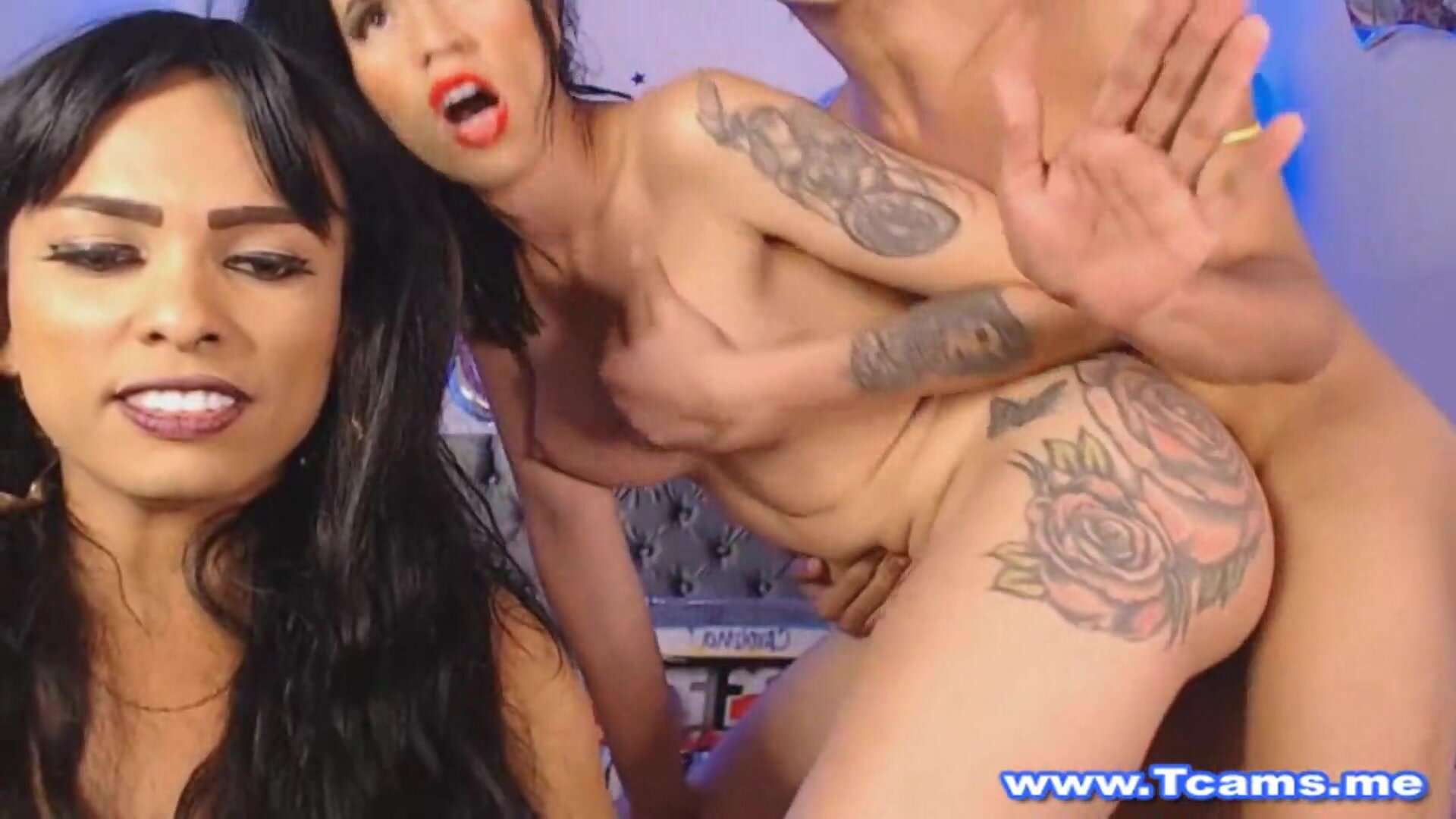 Shemales On Their Threesome Hot Show